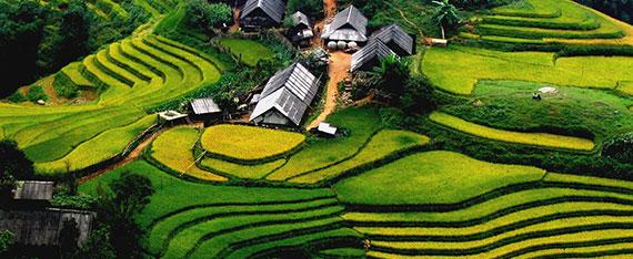 cultura vietnam 4
