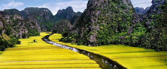 vietnam clasico 3
