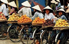 vietnam-clasico-fruta