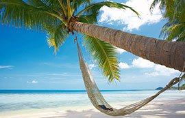 vietnam-relax-palmera