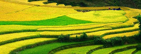vietnam sobre ruedas 4