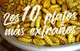 10-platos-mas-extranos