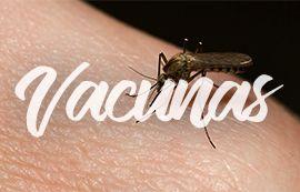 vacunas-camboya