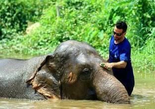 dia con elefantes