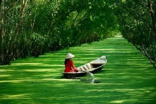 hochiming delta mekong