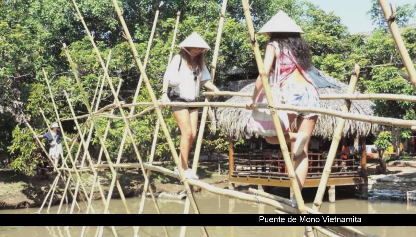 puente de mono vietnamita