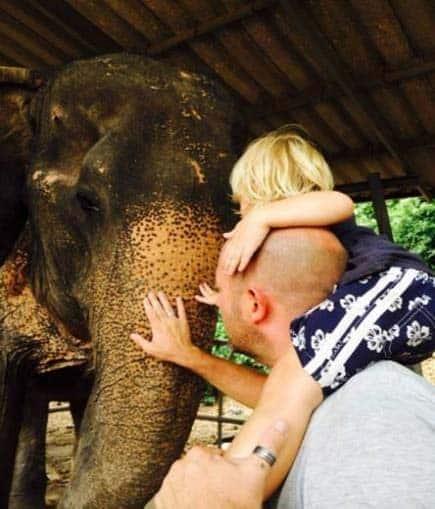Visita de elefantes en vietnam