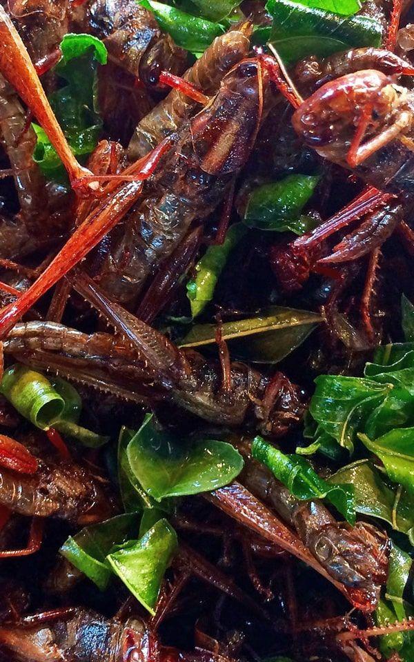 The strangest Thai food